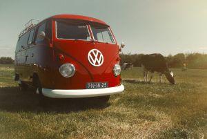 Loveshoot-VW-T1-1